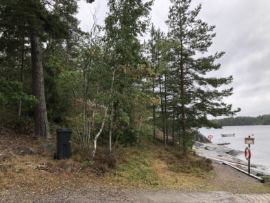 Timmerdalen - skogsvård